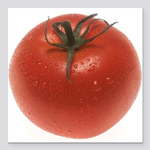 "Fresh Tomato Square Car Magnet 3"" x 3"""
