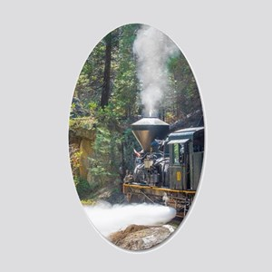 Steam Locomotive in the For 20x12 Oval Wall Decal