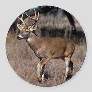 White Tail Deer Round Car Magnet