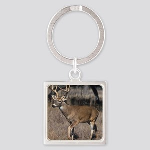 White Tail Deer Square Keychain