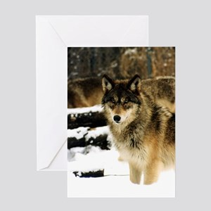Wolves in The Snow Greeting Card