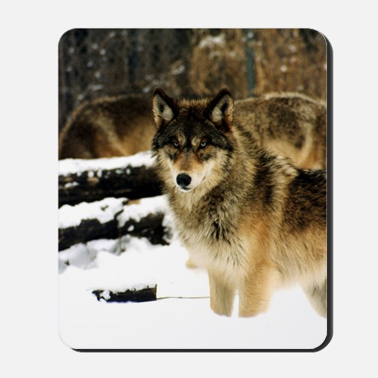 Wolves in The Snow Mousepad
