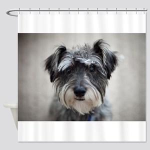 Schnauzer Shower Curtain