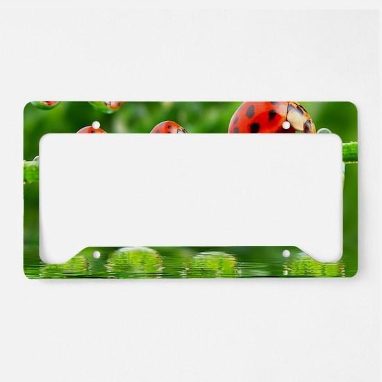 Cute Ladybug License Plate Holder