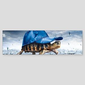 Turtle With Cap Bumper Sticker