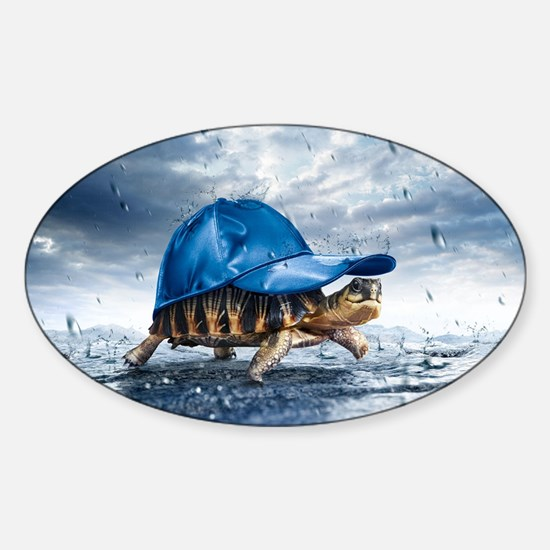 Turtle With Cap Decal