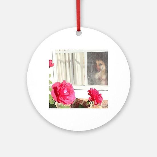 Tara's Rosey Window Round Ornament