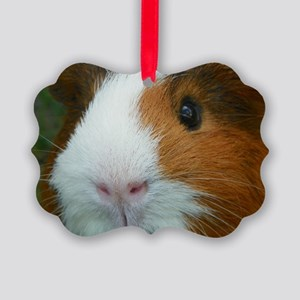Cavy 1 Picture Ornament
