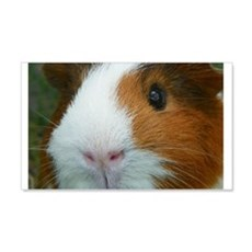 Cavy 1 Wall Decal