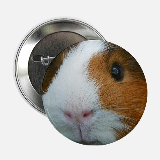 "Cavy 1 2.25"" Button"