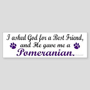God Gave Me A Pomeranian Bumper Sticker