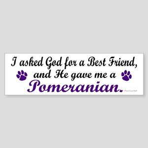 God Gave Me A Pomeranian Bumper Sticker