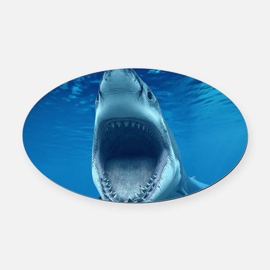 Big White Shark Jaws Oval Car Magnet