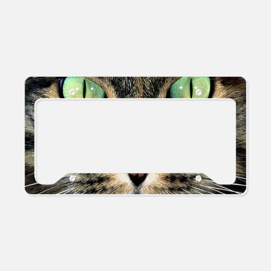Cat Face License Plate Holder