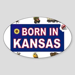 KANSAS BORN Sticker