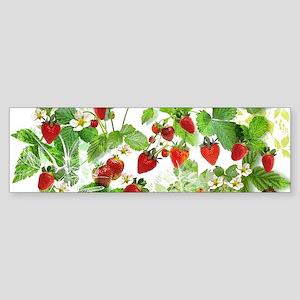 Ripe Strawberries from Provence Bumper Sticker