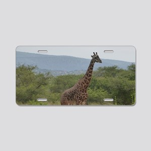 Giraffe of Akagera Aluminum License Plate