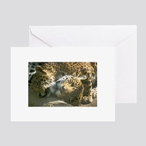 Cheetah Valentine's Day Greeting Card