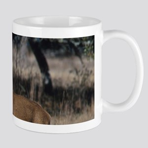 White Tail Deer Mugs