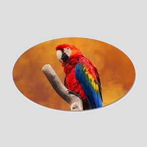 Cute parrot Wall Decal