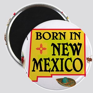 NEW MEXICO BORN Magnets