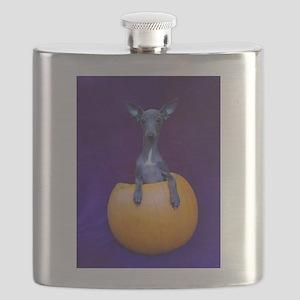 Pup in Pumpkin Flask