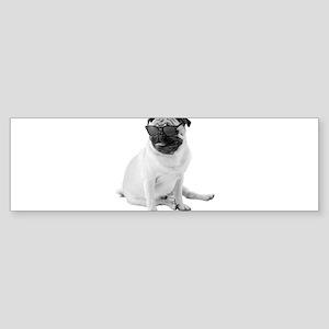 The Shady Pug Bumper Sticker