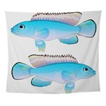 Blue Congo Cichlid Wall Tapestry