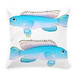 Blue Congo Cichlid Everyday Pillow