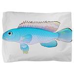 Blue Congo Cichlid Pillow Sham