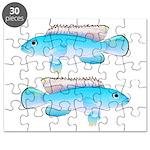 Blue Congo Cichlid Puzzle
