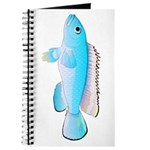 Blue Congo Cichlid Journal