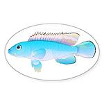Blue Congo Cichlid Sticker