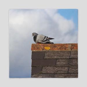 Pigeon on a Roof Queen Duvet