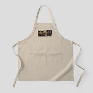 DaVinci Eleven Store BBQ Apron