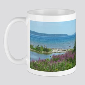 Mackinac pics 086 Mugs
