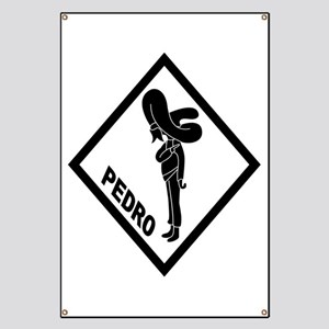 PEDRO Patch (B) Banner