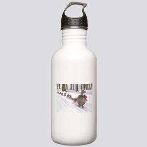 Boston Common Ducks at Stainless Water Bottle 1.0L