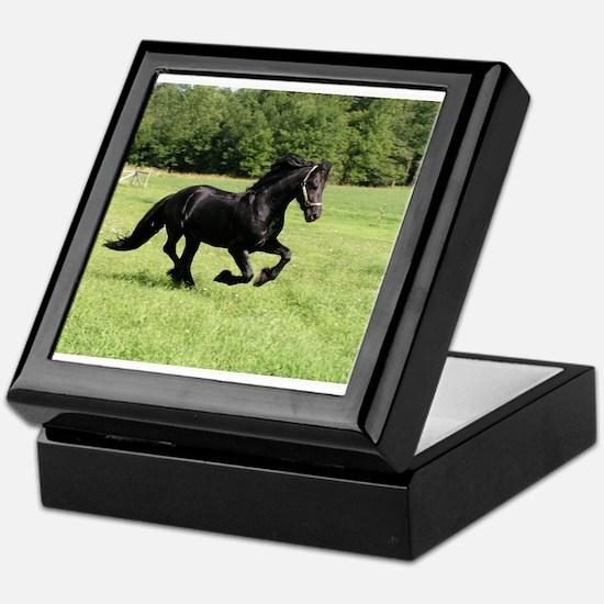Unique Equine Keepsake Box