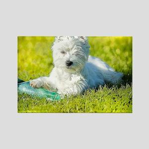 Cute Westie in Grass  Rectangle Magnet