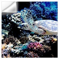 Sea Turtle Wall Decal