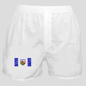 Worn Northwest Territories Flag Boxer Shorts