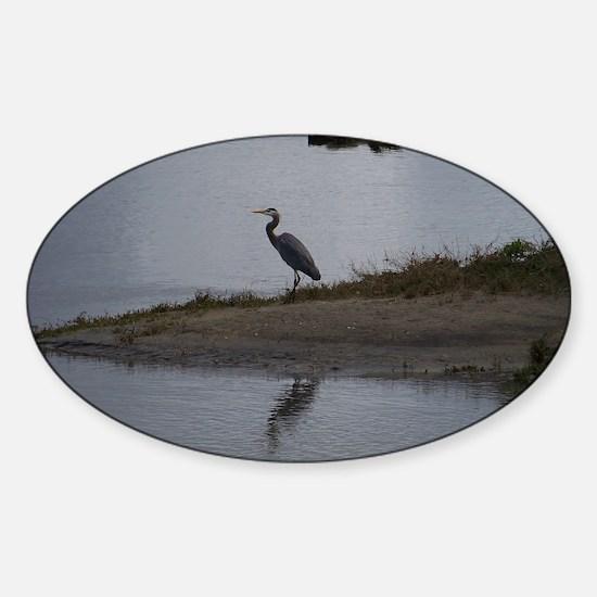 Great Blue Heron Sticker (Oval)