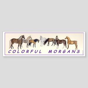 Colorful Morgans Bumper Sticker