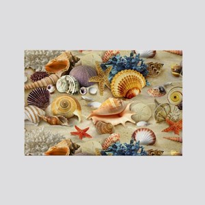 Sea Shells Magnets