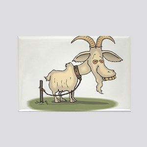 Cartoon Funny Old Goat Magnets