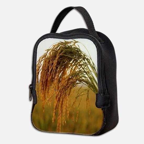 Long Grain Rice Neoprene Lunch Bag