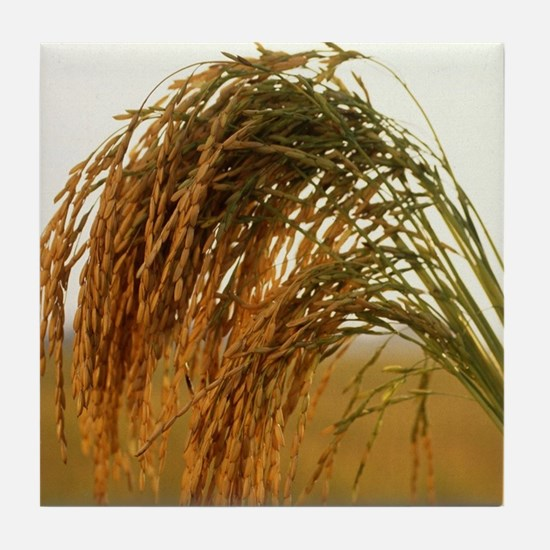 Long Grain Rice Tile Coaster