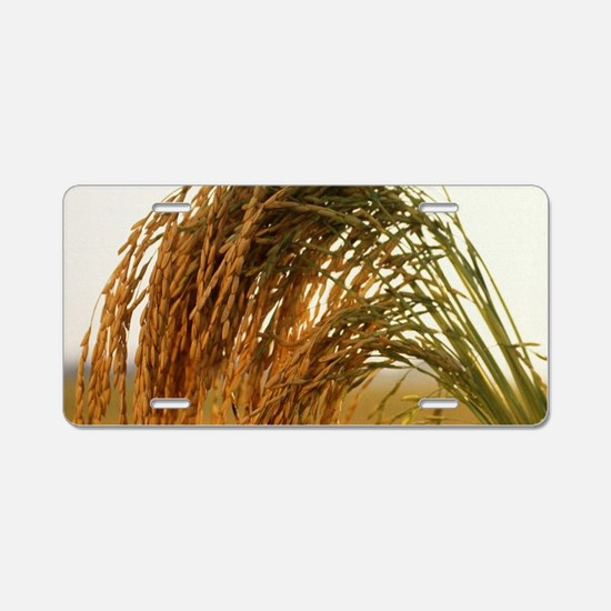 Long Grain Rice Aluminum License Plate