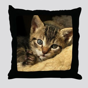Soft Life Kitten Throw Pillow